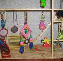 Игрушка волнистый попугай